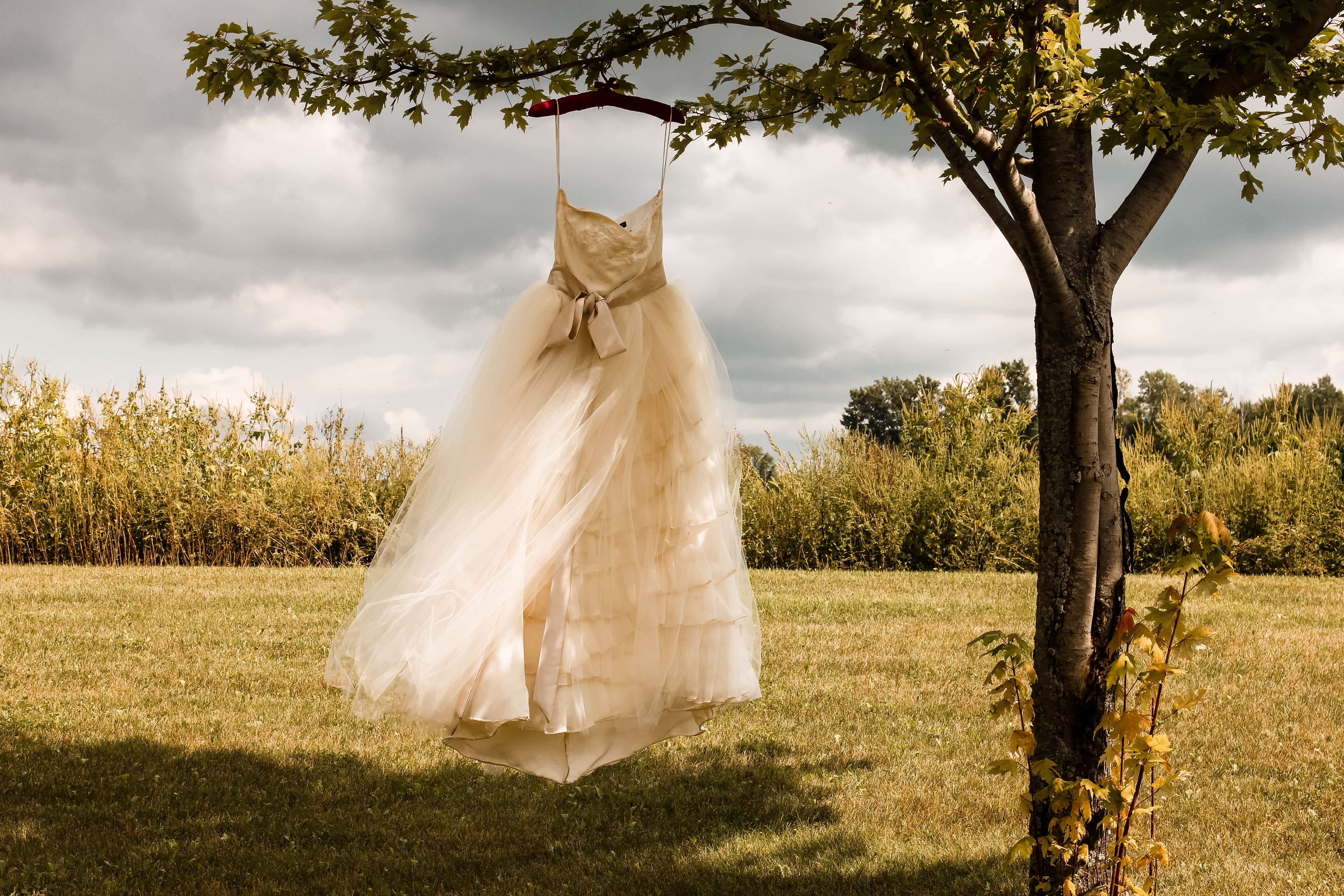木の枝にかけられた白いワンピース
