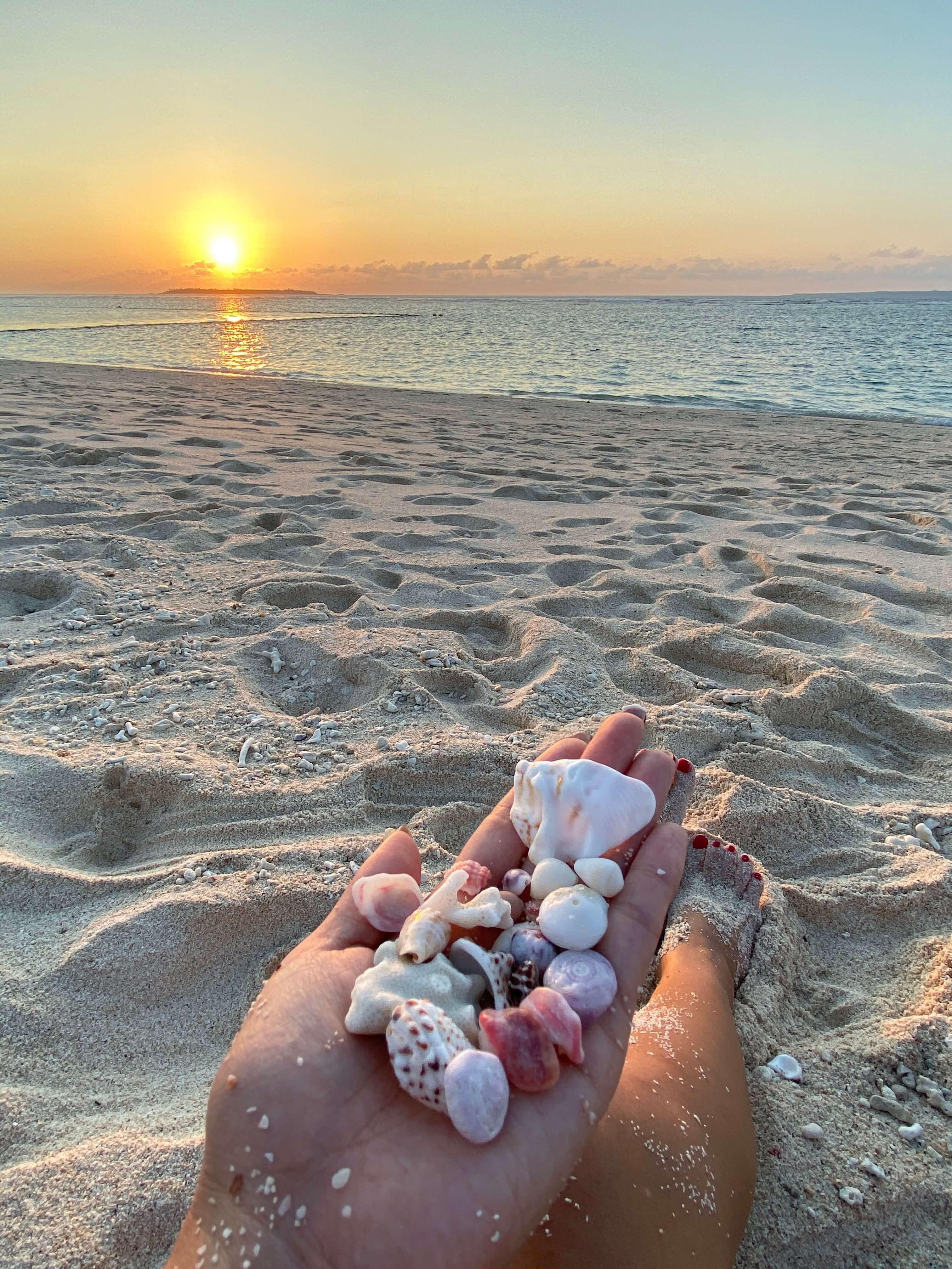 夕日が沈む砂浜と手に乗せた貝殻