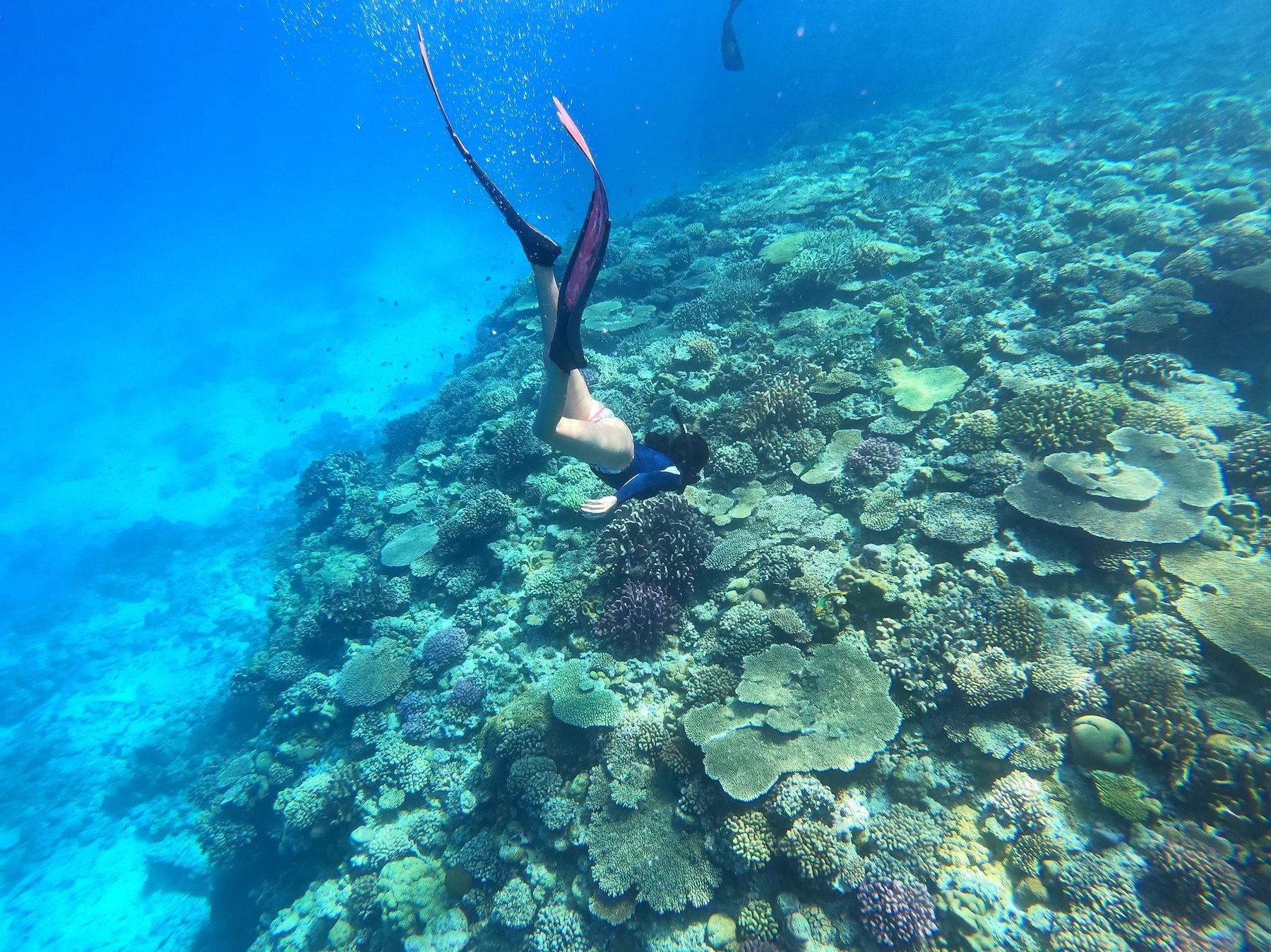 海の中で泳ぐ女性