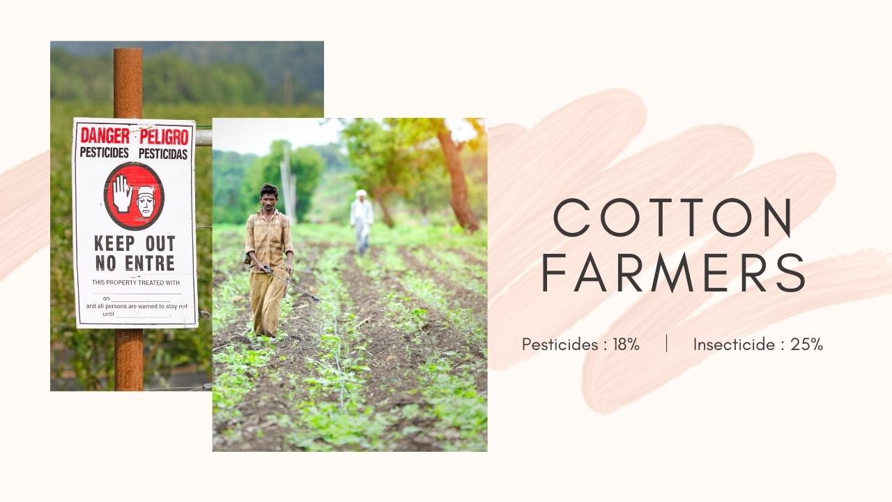 世界のコットン農家の現状