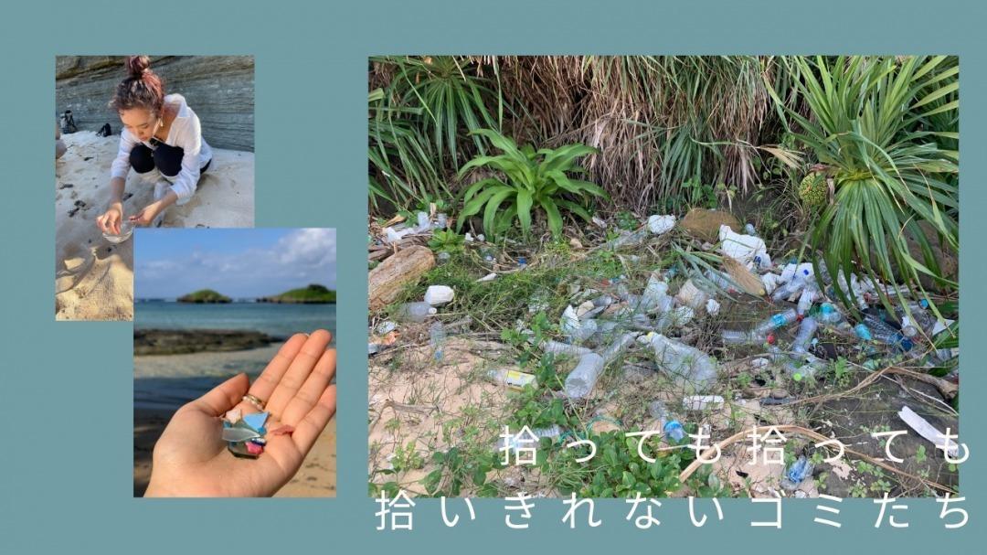西表島に捨てられているプラスチックごみ