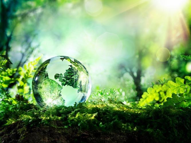 森の中のガラスの地球儀