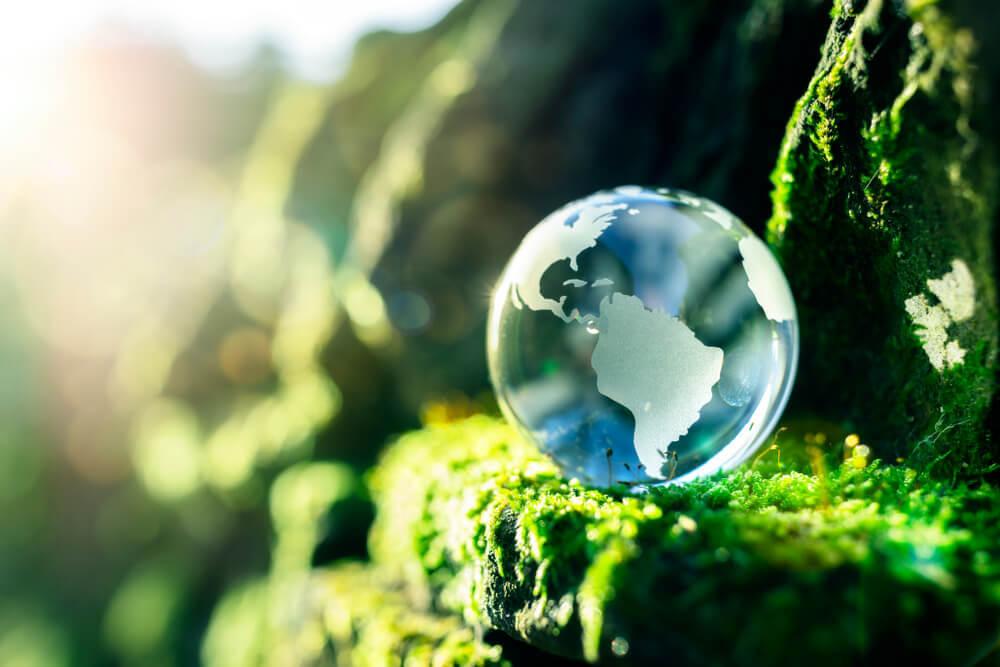 地球を模したガラス玉と苔