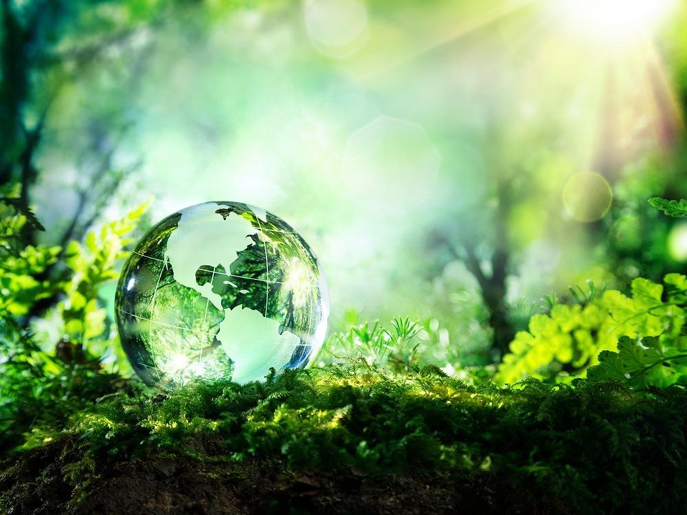 自然の中に置かれたガラスの地球